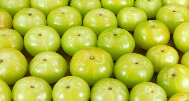 Amla to Improve Immunity Naturally